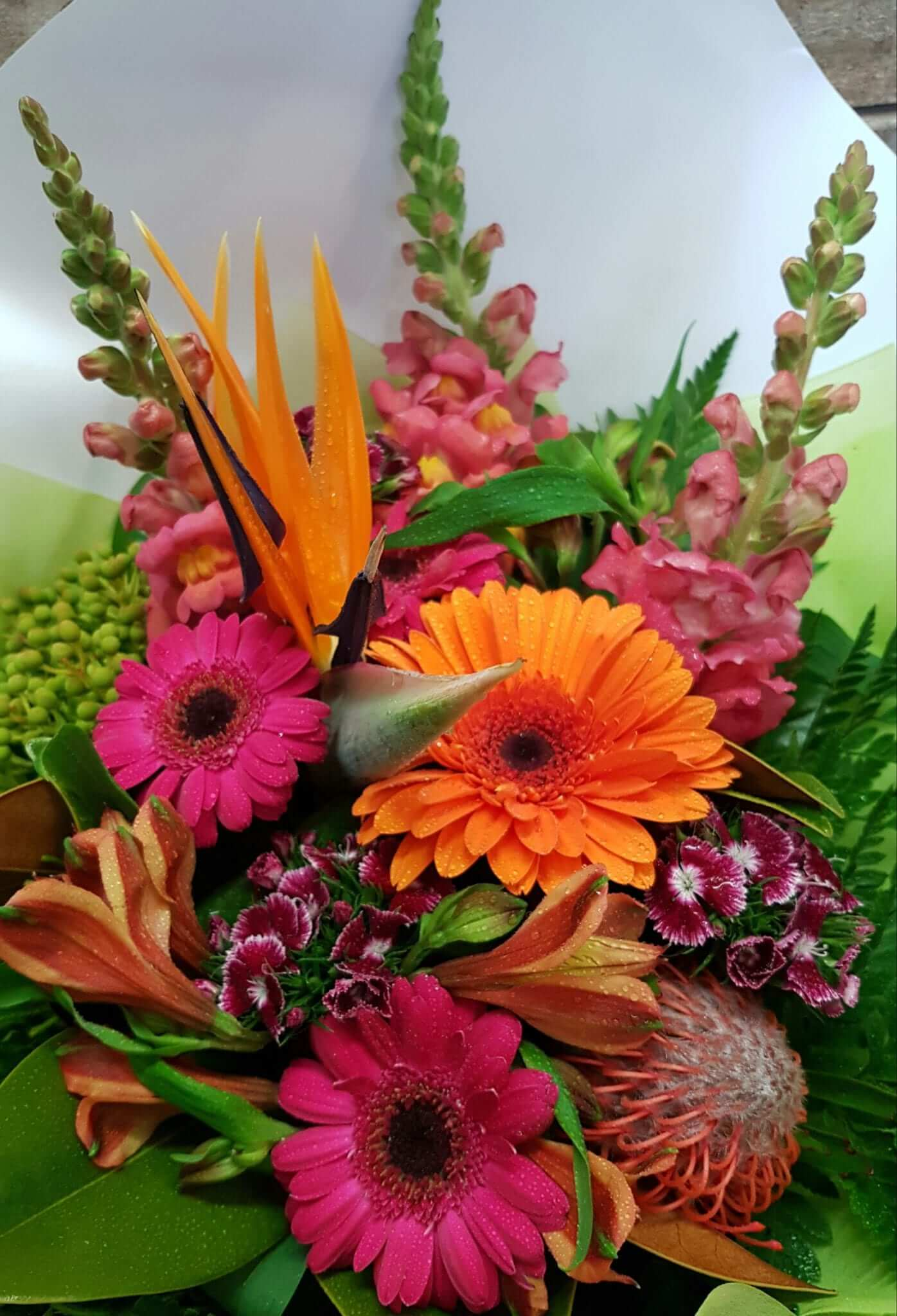 Cherrywood florist tauranga beautiful fresh flowers online a pop of colour izmirmasajfo